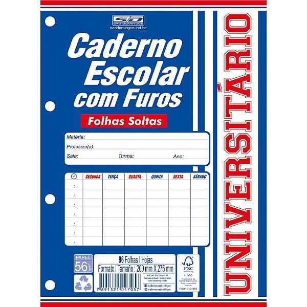 Caderno Esc Furos 1/4 96f - Sd