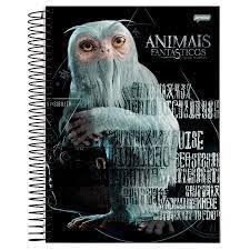 Caderno Esp Univ Cd 1m 96f Animais Fant - Jandaia