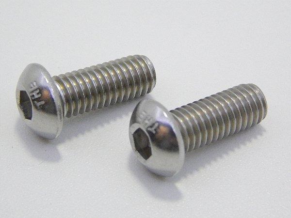 Parafuso Allen Cabeça Abaulada M6 x 25 Aço Inox (Embalagem 20 peças)