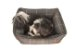 Cama para Cachorro Mabuu Pet - Cinza - Imagem 4