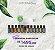 Kit Essencial Para o Lar 11un. 15ml + 1un. 5ml doTerra óleos essenciais - Imagem 2