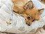Cama Retangular para Cachorros | Sonho - Imagem 6