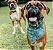 Bandana para Cachorros e Gatos Dupla Face Natal Xmas - Imagem 5