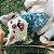 Bandana para Cachorros e Gatos Dupla Face Natal Xmas - Imagem 7