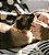 Coleira para Gatos | Neopro Tangerine - Imagem 2