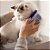 Auto Escovamento com Catnip para Gatos | Azul - Imagem 3