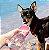 Garrafa Portátil para Cachorros e Gatos   Luxo Rosa - Imagem 1