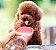 Garrafa Portátil para Cachorros e Gatos   Luxo Rosa - Imagem 3