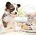 Garrafa Portátil para Cachorros e Gatos | Luxo Branca - Imagem 2