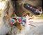 Gravata para Cachorros e Gatos | Retrô Hippie - Imagem 1