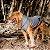 Casaco de moletom cinza para cães e gatos | Lead - Imagem 2