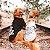 Casaco de Moletom para Cachorros - Good Vibes Only - Imagem 2
