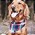 Bandana para Cachorros - Maple Windsor - Imagem 2