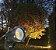 Espeto de Jardim LED - 03w - Verde - Imagem 4