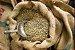 CAFÉ CRÚ BEBIDA MOLE 10KG - Imagem 3