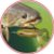 ISCA ARTIFICIAL SOFT MONSTER 3X PADDLE FROG FOREST 2UN - Imagem 3