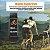 Pulseira Inteligente F64 HR Bluetooth e tela touch colorida - Imagem 6