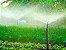 Aspersor Para Irrigação De Hortaliças P5 Rosca 1/2 C/6 Und - Imagem 3