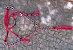 Conjunto Peitoral e Cabeçada Argolas Inox - Vermelho - Imagem 1