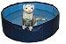 Ferret Swimming Pool Marshall - Imagem 1