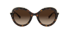 Tiffany TF4155 Dark Havana Lentes Brown Gradient - Imagem 2