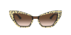 Dolce & Gabbana DG4357 Leo Glitter Gold On Black Lentes Brown Gradient - Imagem 2