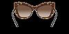 Dolce & Gabbana DG4364 Havana Lentes Brown Gradient - Imagem 4