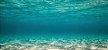 Análise de Vinhaça - Imagem 1
