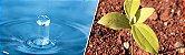 Análises de água e solo - Imagem 1