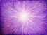 Vela Palito Violeta (1 unidade) - Imagem 2