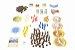 Catan - Mercadores e Bárbaros (Expansão) - Imagem 2