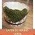 Layer de Merino Verde - Imagem 1
