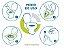 Coletor de Fezes e Urina ColOff® Modelo Básico - Caixa 100 Unidades - Imagem 3