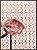 Flores VII - Imagem 1