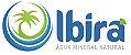Água Mineral Ibirá Com Gás 300 ml Pet (Pacote/Fardo 12 garrafas) - Imagem 2