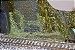 Diorama Trilhos Da Serra Do Mar Pr  - Imagem 6