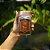Noisette Chocolat (Avelãs Drageadas no Chocolate Belga ao Leite) - 372G - Imagem 1