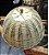 Boleira em bambu natural D=28 x H=15cm - Imagem 3