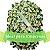 Coroa de Flores Empresa Grande - Imagem 1
