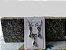 Conjunto Fyenox   Cor: Verde Esmeralda - Imagem 3