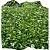 Flor de Mel cx c/ 15 mudas - Imagem 1
