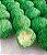Confeito de Miçanga Verde MIX 500g - Imagem 2