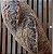 Pão de Gergelim  - Imagem 1