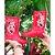 Galocha Minnie infantil Flower Disney Grendene Kids velmelho - Imagem 2