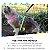 Peitoral Cat.Walker Bigodiva tamanho P Floral Rosa - Imagem 2