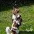 Pet Bolhas para cães e gatos - Imagem 4