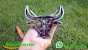 Marcador para gado bovino inox personalizado - Imagem 2