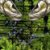 Bandana Black Mask Brk FPU 50+ REF 020 - Imagem 3