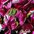 Bandeja de Kalandiva com Bombom Sonho de valsa - Imagem 2