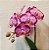 Orquídea Pink no Cachepot de Madeira com Caixa de Bombom Ferrero Rocher 8 unidades - Imagem 2